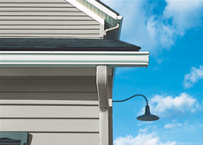 Gutters and Shields